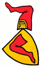 Züricher Wappenrolle - neznámý