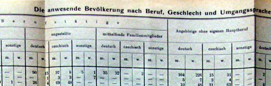 výsledky sčítání lidu 1910 pro město Brno